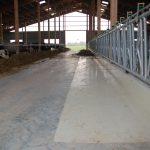 Melkzentrum Futtertisch Norby (1)